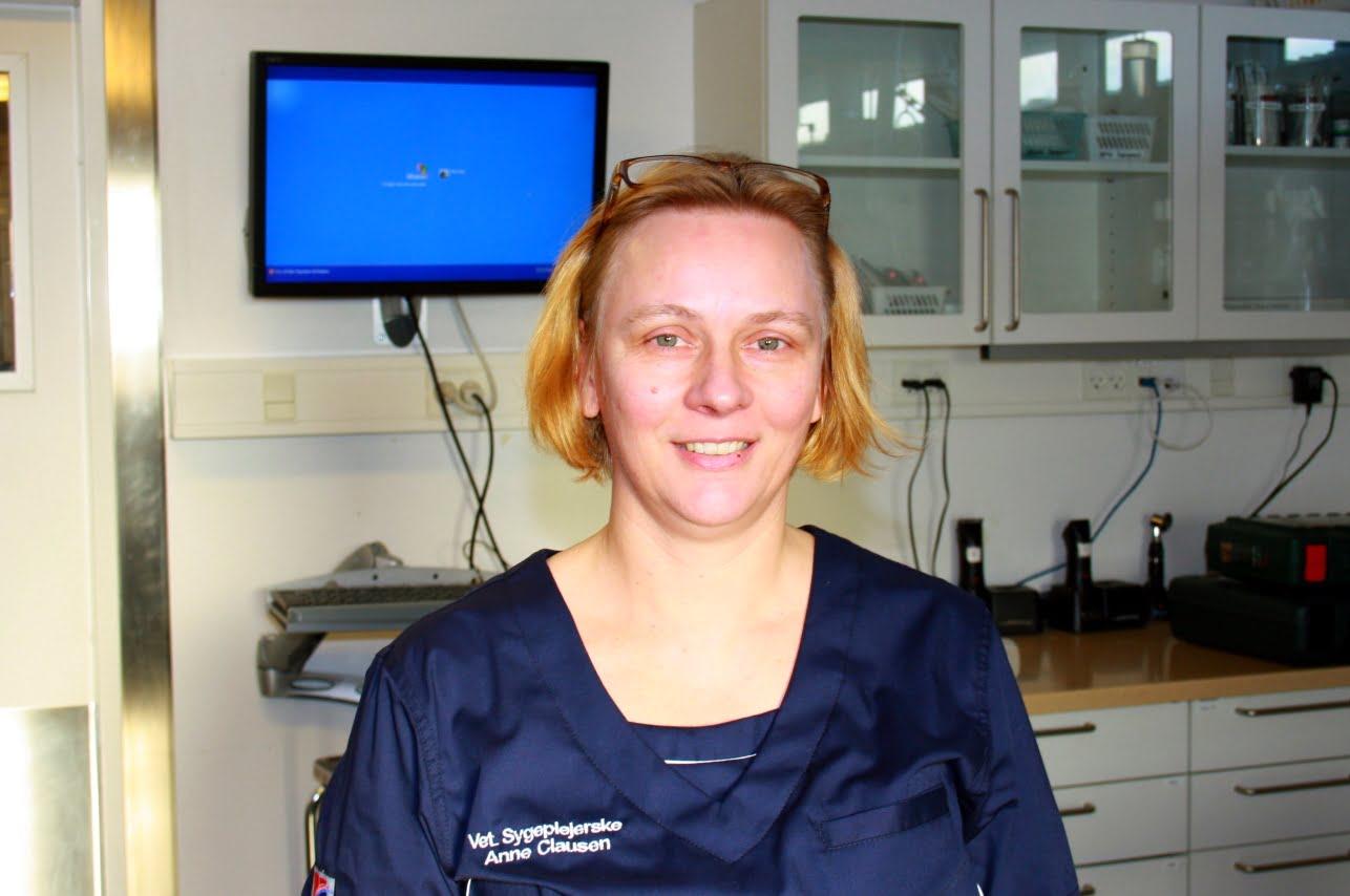 Anne Clausen Veterinærsygeplejerske