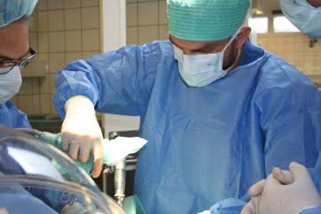 Dyrlæge Simon Grove i gang med at operere på en kat med behov for knoglekirugi.