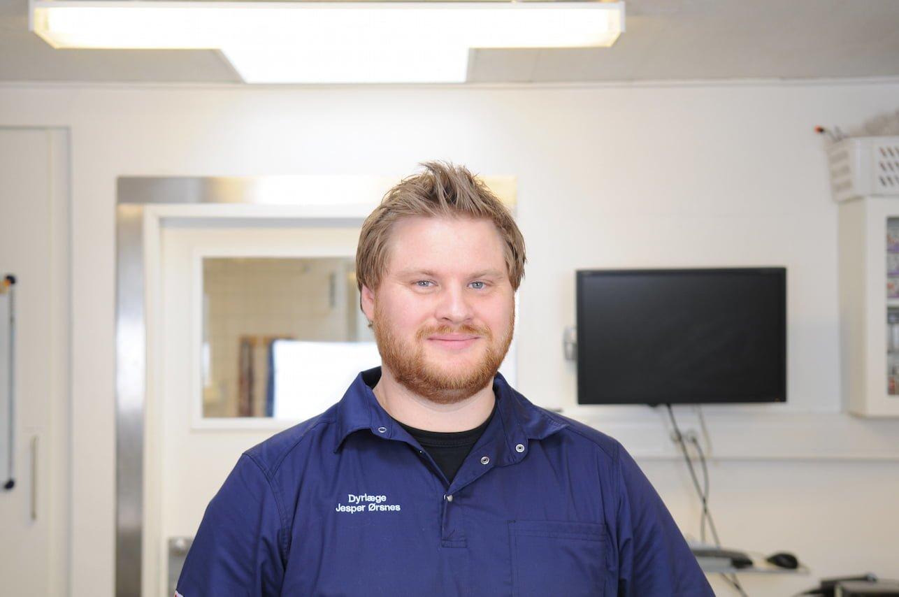 Jesper Ørsnes